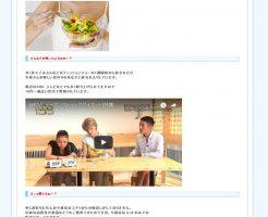 メガスリーミーQ10(HSDダイエット(Human Stoic Diet)の効果は?口コミ・評判・評価レビュー